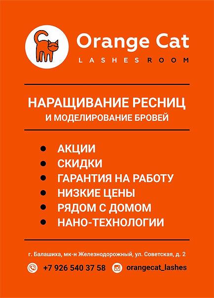 orange cat айдентика
