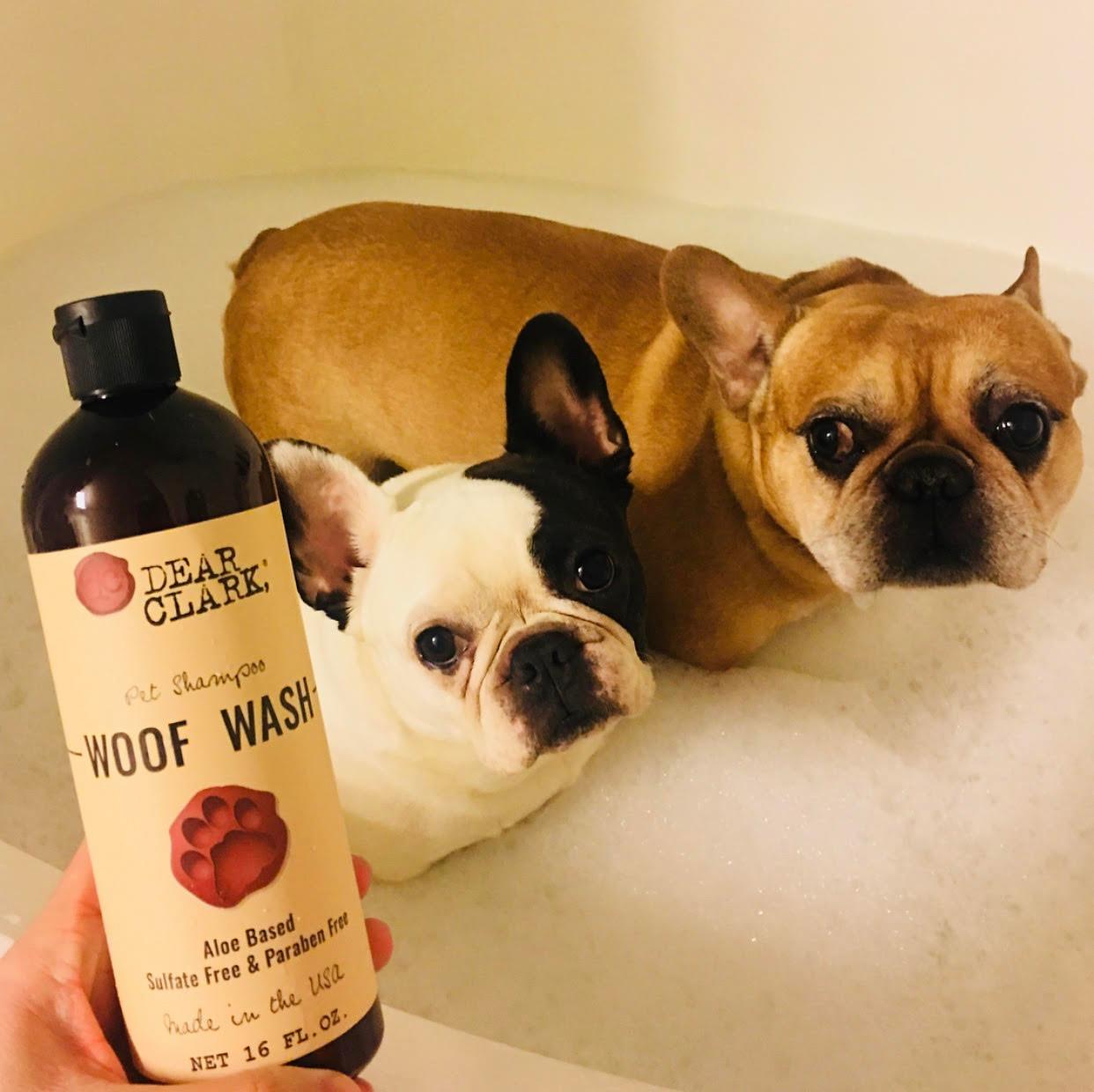 Pets & Animals Winner: Woof Wash by Dear Clark