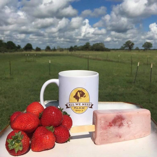 Goat Milk Pops by All We Need Farm