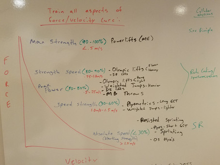 """""""My Whiteboard"""" Training on the force velocity curve"""