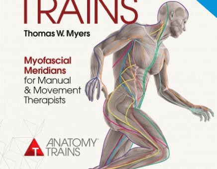 "Targeting specific ""myofascial lines"""