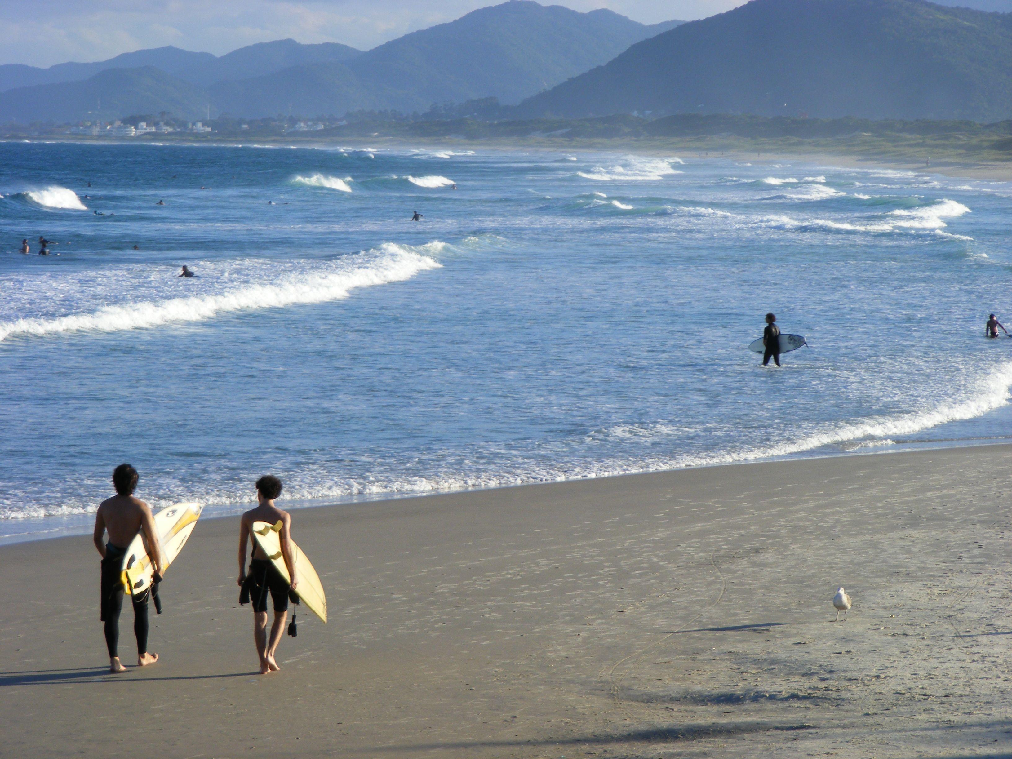 Surf Praia Joaquina