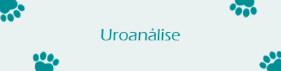 uroanalisesite.png