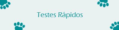 testes rapidos site.png