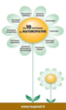 techniques naturelles, naturopathie, naturopathe, nutrition, diététique, gestion du stress, relaxation, bien être, santé au naturel, phytologie, gemmologie, fleurs de bach, hydrologie, respirations, exercice physique, hygienne de vie, massages