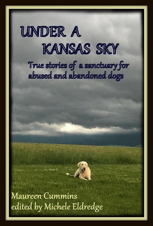 Under a Kansas Sky