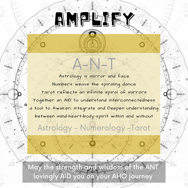 Amplify ANT.png