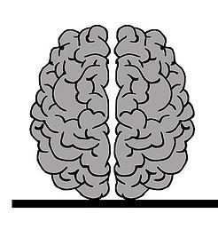brain-2146156_960_720.jpg