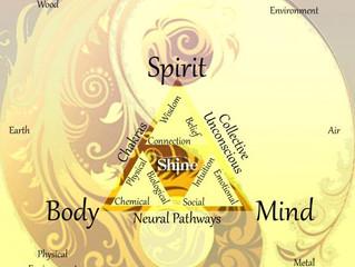 Healing Paradigm