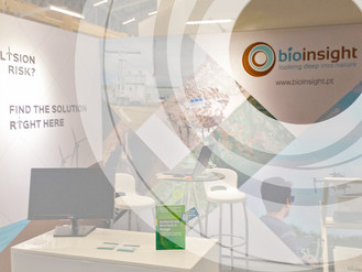 Bioinsight present at WINDABA and Wind Europe in November 2017