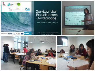 Bioinsight presents preliminary results of the Biosphere Reserve of Berlenga marine ecosystems valua