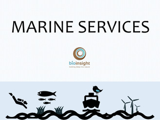 Business2Sea ends today, but you can still see what we can do to help the Marine Sector in our eBook