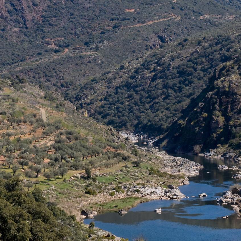 Sabor valley