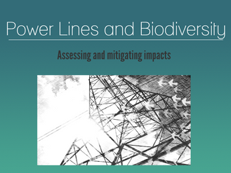 Are you having fatalities associated to power lines in your project? See how we can help you prevent