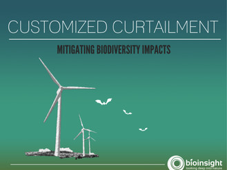 Customized Curtailment - How to avoid unnecessary losses of wind energy production projects