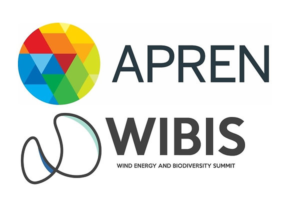 Seminar Redesigning Wind Energy for the Next Era - 15th April