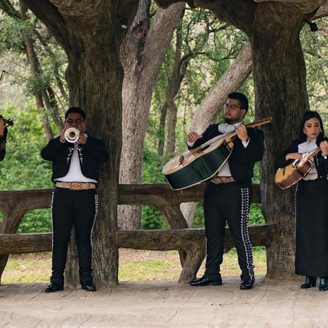 Mariachi Azul Performing