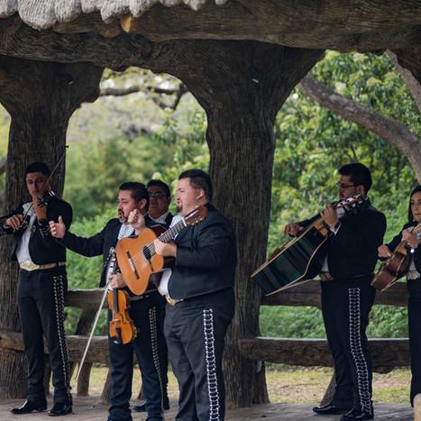 Mariachi Azul Performance