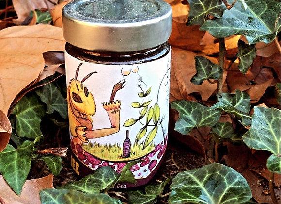 Miel de chêne, parcelle Maine Blanc