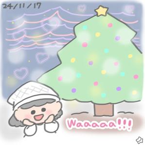 24/11/17 Botanical garden Christmas!!