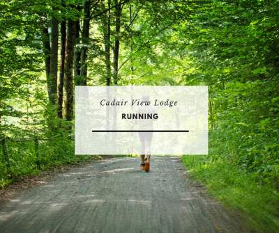 Our local area is a mecca for runners and trail runners.