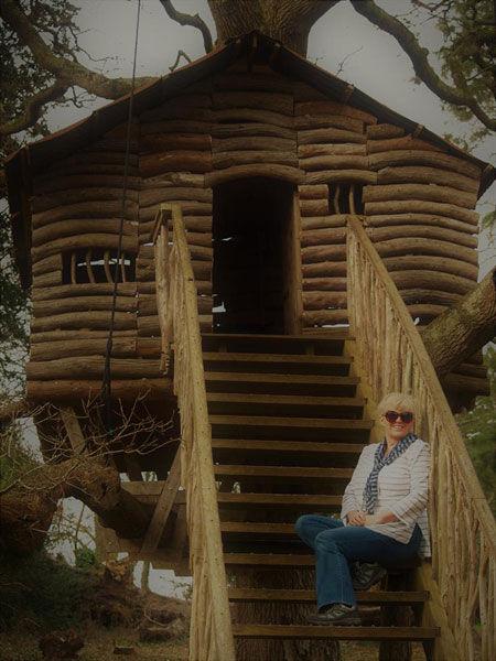 Sue-Plas-Newydd.jpg