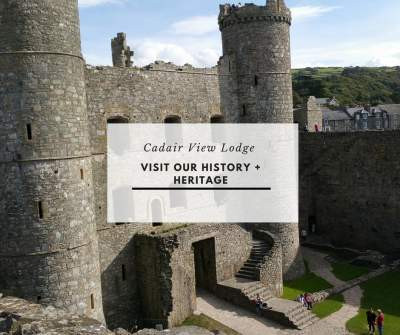 Explore Our History + Heritage