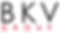 BKV Group Logo.png