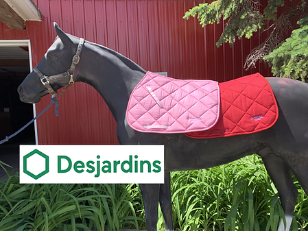 Desjardins saddle pads.png