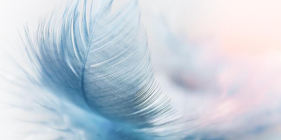 Šepet angelov - reading