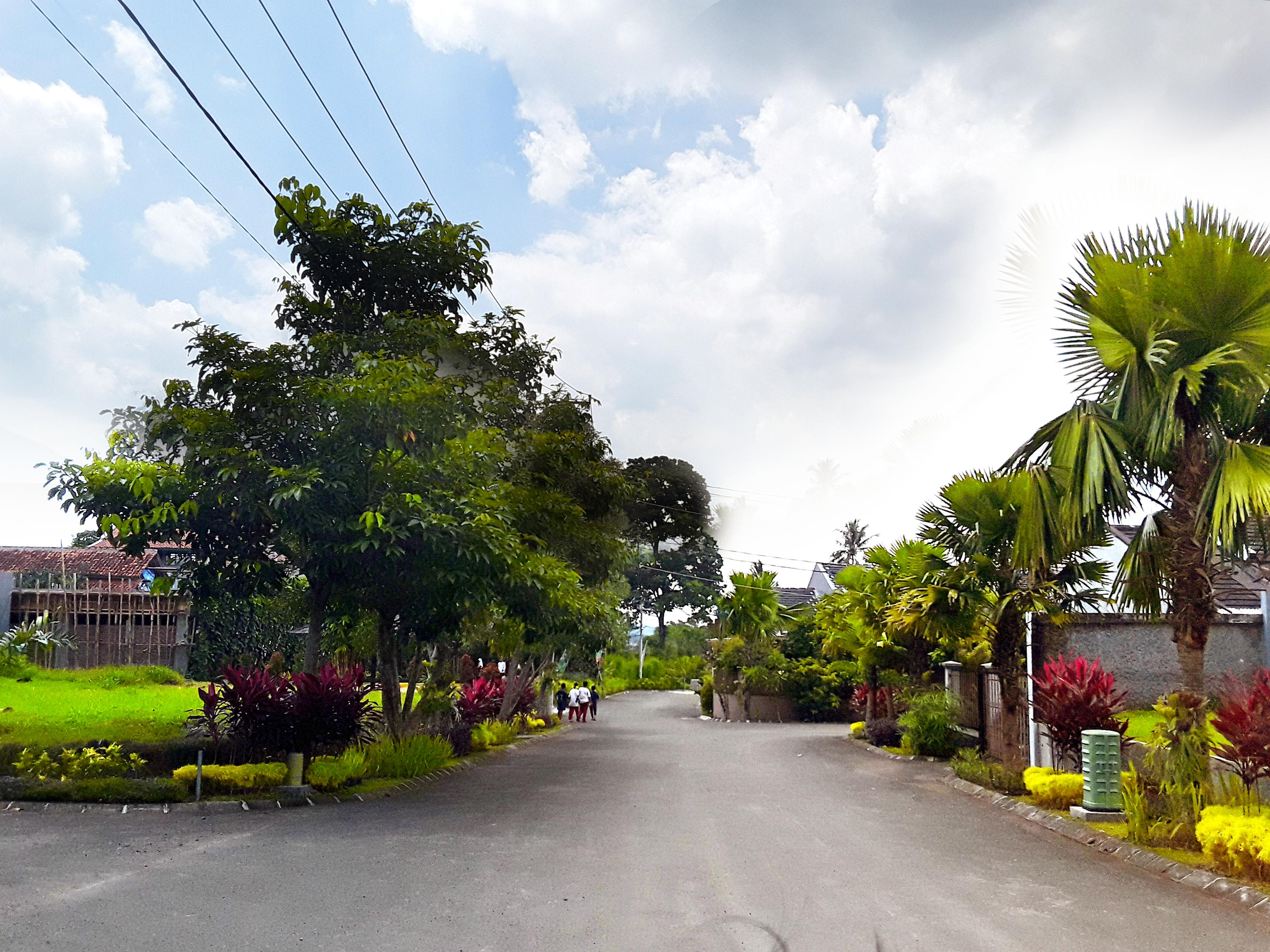Jalan Utama Kawasan