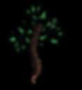PC-logo_BaronColor-01.png