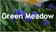 GreenMeadowLogo.jpg