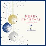 SLS Consulting祝你聖誕快樂,新年快樂!