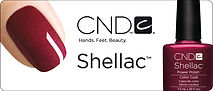 cnd shellac nails in bristol beauty salon,whitchurch