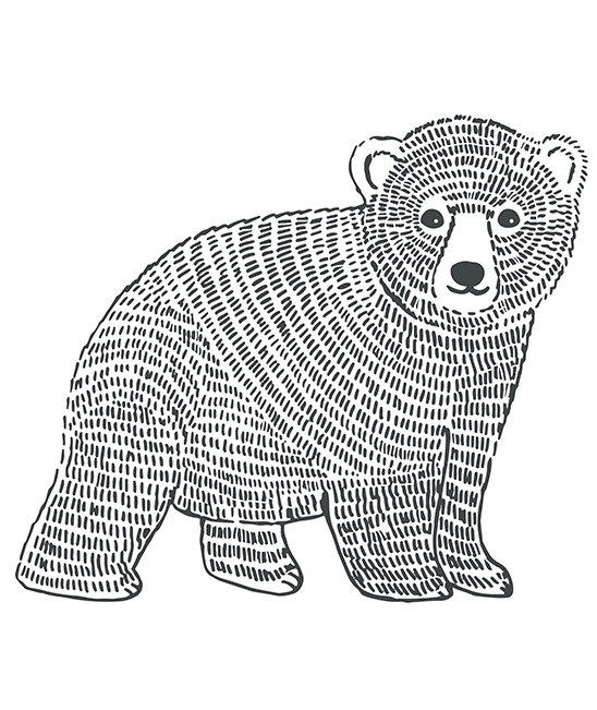 Wall Stickers Bear
