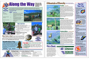 Tourism Newsprint Brochure