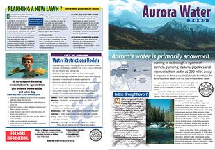 Aurora 1-4.jpg