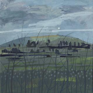 Wrekin