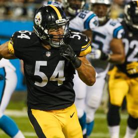 Panthers_Steelers-8166.jpg