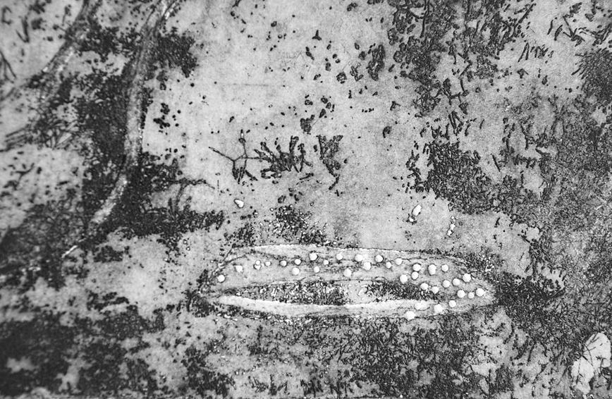 Hommage Détails - gravure, aquatinte sur cuivre (2017)