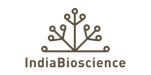 logo-brown-padded.png