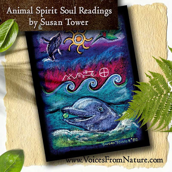 Animal-Spirit-Soul-Reading-Dolphin-jewel