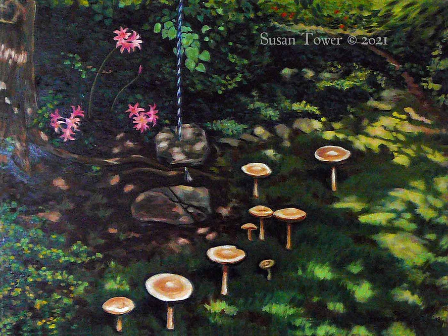 Backyard-Fairy-Ring-by-Susan-Tower_1400x