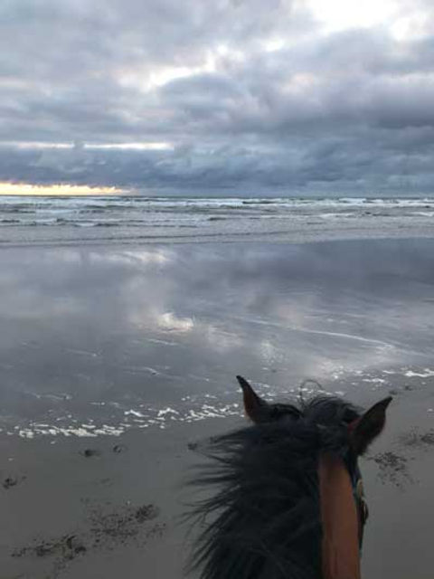 Susan-Ocean-Horseback-WA_400_w.jpg