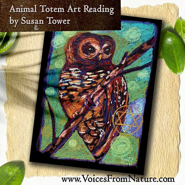 Animal-Totem-Intuitive-Reading-SpottedOw