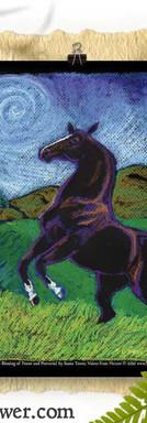 Animal-Totem-horse-spirit-Poster-Susan-Tower_800sq_w.jpg