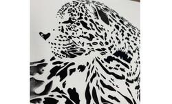 elastic foil-tiger