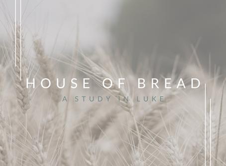 House of Bread | A Series in Luke