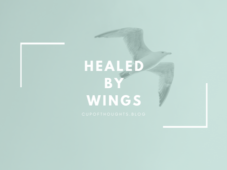 Healed by Wings